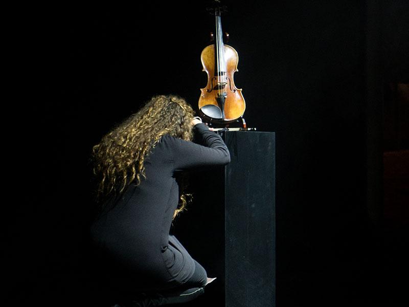 Le Temps d'un Violon, Spectacle Musical