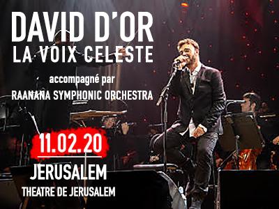 DAVID D'OR: LA VOIX CELESTE