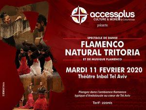 flamenco natural tritoria